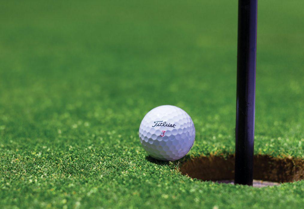 Перше у Західній Україні гольф – поле